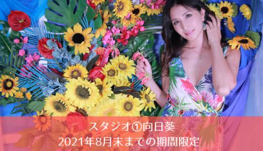 スタジオ①向日葵 2021年8月末までの期間限定